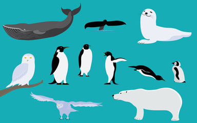 Set of arctic and antarctica animals
