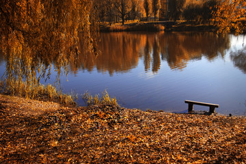old bench by the lake in the fall