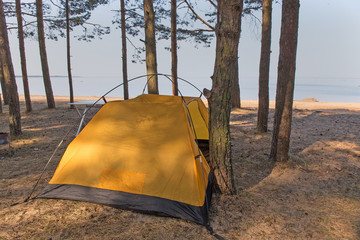 tent installed in the forest close to the sea