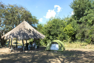 camping in the African savannah