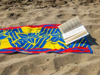Lettura da spiaggia