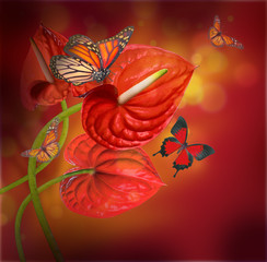 .Floral background of red flowers