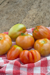 Organic  tomatoes on old wooden table
