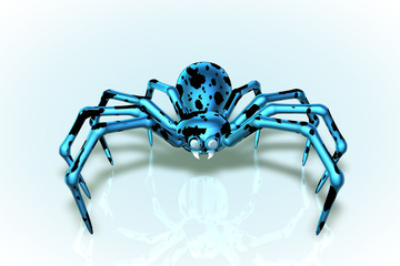 Blue Boy Cowder Spider