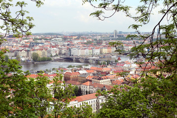 Panoramic view of prague old town