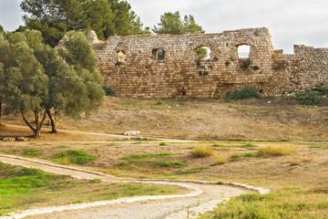 Antipatris fortress .