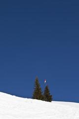Schneelandschaft, Tannenbäume unter blauem Himmel