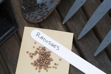 Radish Seeds for Gardening