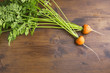 Fresh Round Carrots
