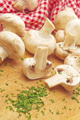 Fresh edible Portabello Mushroom Champignon and Parsley