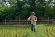 Farmer pouring  fertilize