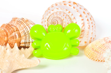 Beach toys and seashells on white background