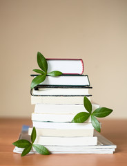 books for knowledge and the brain with leaves