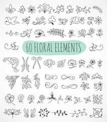 Hand drawn floral elements for your design