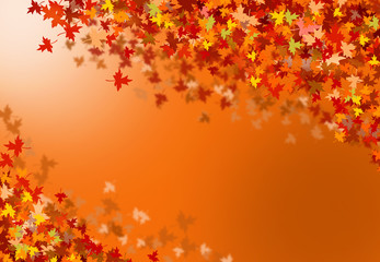 Background of autumn leaf fall