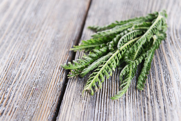 Yarrow on wooden background