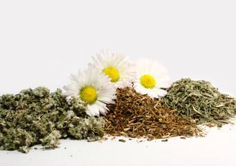 Dried healing herbs