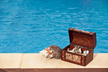 Treasure chest pool snail