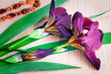Still life: Blossoming irises and costume jewelry against a tabl