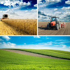 Agricultural collage, various farming photos in one.