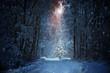Leinwandbild Motiv Weihnachtsbaum