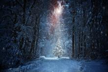"""Постер, картина, фотообои """"Weihnachtsbaum"""""""