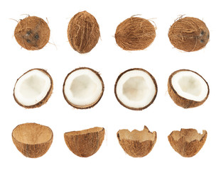 Set of coconut fruits isolated