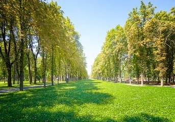 city park in Kharkov. Ukraine.