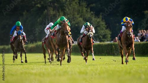 Oaks in a Racecourse Partynice.