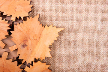 Autumn Wooden Leaves on the Rough Background