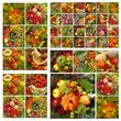 fall fruits pattern