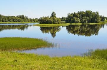 Бородаевское озеро в Вологодской области