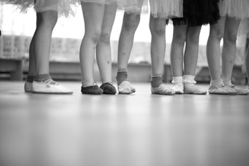 Little ballerinas legs standing in a row; monochrome