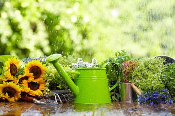 Gardening tool in rain