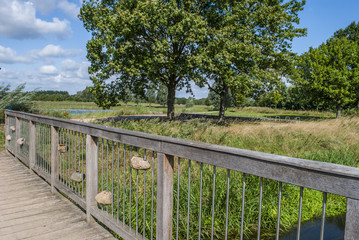 Wooden Bridge - Countryside