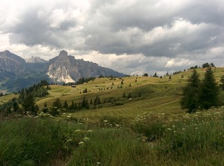 Fields in the Dolomites