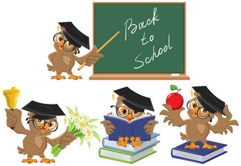 Set Owl teacher. Back to School
