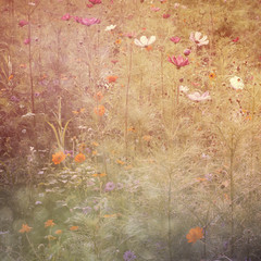 dreamy background with color daisy flowers, clitter candid light