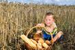 kleiner Junge mit Brot im Kornfeld