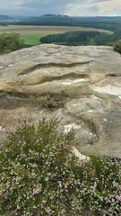 Blick auf den Königsstein