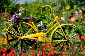 Zusammen Fahrrad fahren