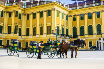 Horses and carriage tradition, Schonbrunn , Vienna, Austria