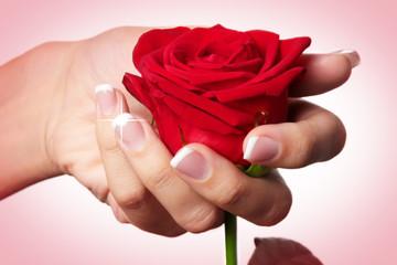 les ongles et la rose
