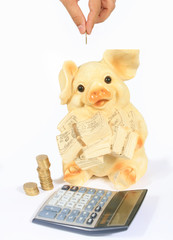 piggy bank, calculator and money