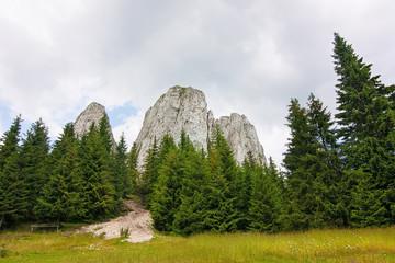 Beautiful landscape with cliffs