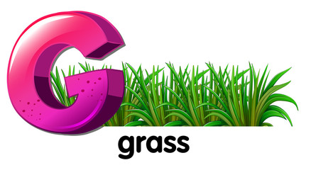 A letter G for grass