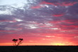 Sunset on the Nullarbor Plain