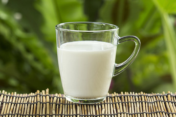 Glass of fresh milk