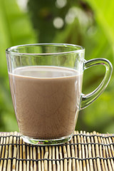 Fresh chocolate Milk in a glass