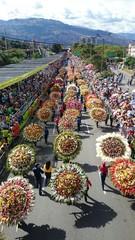 Desfile de silleteros Medellín Colombia